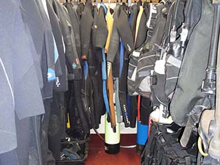 Rental Wetsuits